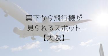飛ぶ飛行機を真下から見られるスポット!大阪から行ってきました