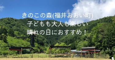 福井県おおい町の「きのこの森」は小さな子連れに最高!晴れの日に絶好の場所