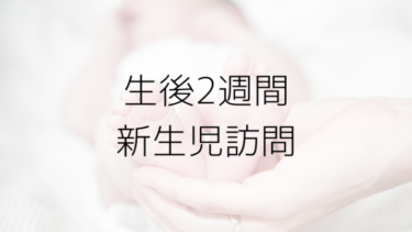 生後2週間ミルクの量は?混合の不安。早めに新生児訪問お願いしたはなし。内容や相談したことは?