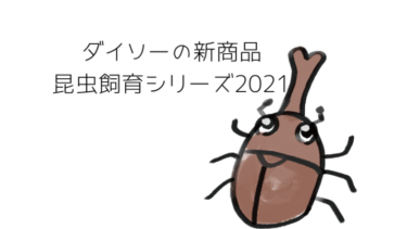 ダイソーの新商品昆虫飼育シリーズ2021!カブト虫やクワガタ虫の飼育セットが揃えちゃう