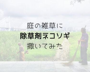 庭に撒く除草剤「ネコソギ」を使用してみた!効果は?安全性はどうなのか?